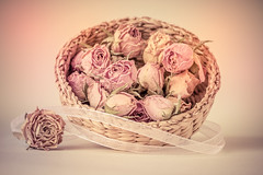 Roses (Anikó Lázár) Tags: smileonsaturday roseisarose rose dried basket pastel vintage stilllife