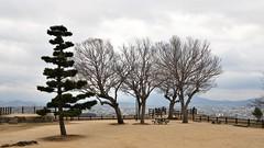 ✪丸亀城二の丸跡 (haguronogoinkyo) Tags: nikon d610 japan