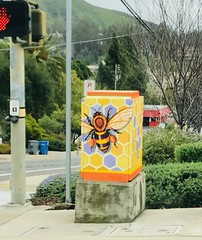 Busy bee utility box (enovember) Tags: bee busy utility box beehive slo sanluisobispo painting corner