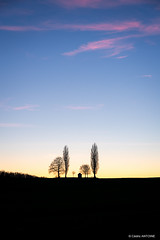 La Chapelle Saint-Donat à l'heure bleue (cedant1) Tags: saintdonat chapel chapelle belgium belgique belgië wallonia wallonie liège namur landscape bluehour clouds cloud sunset trees nikon nikond750 d750 nisicpl nisiv5pro nisignd pink