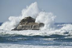 Crashing Wave (D-Adams) Tags: waves ocean rock crash crashing sea beach nikon d750 200500mm