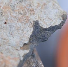 DSC_9305 (jgdav) Tags: ancient macro rock image quartz pigment ochre america petroglyph pictograph