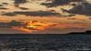Sunset After A Rainy Day (BraCom (Bram)) Tags: 169 bracom bramvanbroekhoven goereeoverflakkee grevelingen grevelingenmeer herkingen holland nl nederland netherlands southholland zuidholland avond bomen cloud clouds dijk dike evening lake landscape landschap lucht meer silhouet silhouetten silhouettes sky sunset trees water waves widescreen wind wolk wolken zonsondergang