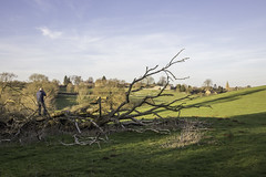Eaton (NathanBateson) Tags: england english villages countryside farming leicestershire rural british heart eaton vale belvoir church spire fields landscape tree photographer