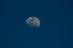 Moon over Fot Mahadev (iamfisheye) Tags: 300mm vr nikon f4 february india d500 naturetrek xqd afs raremammalsandbirdsofgurjarat pf tc17 2019