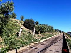 Erta - Ascent (rocco944) Tags: rocco944 taranto puglia italy zonaauchan samsungsma320fl