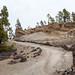 Canary Islands geology