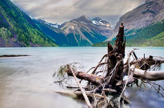 Lake Mt Robson (Jochem.Herremans) Tags: mt robson lake null blue sky clouds canada jasper park relax wood trunk birds luminar fujifilm xt1 skylum