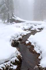 Little Deer Creek in Snow (jeandayphotography.com) Tags: california color conifer creek fog jeanday jeandayphotography landscape mist nationalpark pentax sequoia snow trees usa water wilderness winter