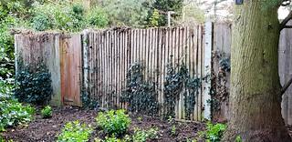 A Fence !
