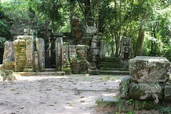Angkor_Ta Prohm_2014_03