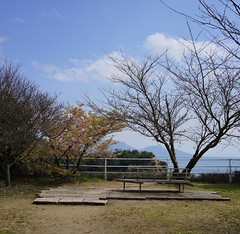 DSC04466.JPG (kabamaruk) Tags: edited kagawa shikoku naoshima art sky sea flower