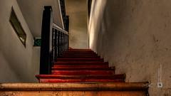 Shenzhen, old chinese garden, stariway in the house (China) #25, 11-2018, (Vlad Meytin, vladsm.com) (Instagram: vlad.meytin) Tags: china khimporiumco meytin shenzhen vladmeytin ancient asia chinesegarden citygarden garden oldarchitecture oldgarden photography pictures pond stairs stairway vladsm vladsmcom 中国 中國 深圳 guangdong cn