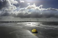 Boje530 (lotharmeyer) Tags: lotharmeyer water sea natur wasser nature zierikzee holland niederlande blue spiegelung gegenlicht reflexe horizont sturmflutwehr