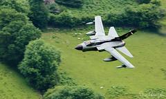 Panavia Tornado GR4 (Steve Moore-Vale) Tags: gr4 panavia tornado banking machloop specialtail topside wales lowflying machynlleth loop mil military jet aviation plane aeroplane airplane