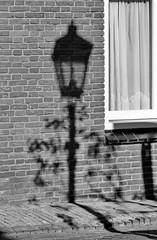 light (Mattijsje) Tags: light shadow streetlight lantaarnpaal lantaarn schaduw wal red window raam gordijn vitrage struik bush post vintage old pole paal shadowonthewall muur bricks steentjes bakstenen