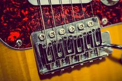 strings [Day 3699] (brianjmatis) Tags: instrument music guitar strings photoaday electricguitar project365 sanluisobispo california unitedstatesofamerica us