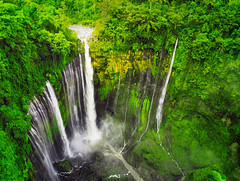 Tumpak Sewu Waterfalls (PokemonaDeChroma) Tags: waterfalls nature wilderness malang eastjava indonesia drone parrotanafi green forest lumajang december homeland southeastasia tumpaksewuwaterfalls cobantumpaksewu