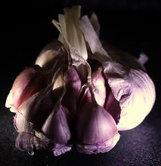 Garlic (Grenzeloos1) Tags: macromondays somethingbeginningwiththefirstletterofyoursurname theme garlic bulb pretty clove hmm