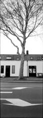 The Riva Uprights (selyfriday) Tags: selyfriday wwwnassiocomempty nassiocom minolta riva panorama film 35mm analogue minoltarivapanorama kentmere400 1 25 rodinal 20˙c 75minutes zaandam zaans zaanstad netherlands dutch nederland holland