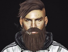 [MF] Brows - Rick Shaved - Catwa & Omega Applier (.Halim.) Tags: magnificent brows sl