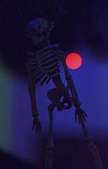 Skeleton Ornament (MTSOfan) Tags: skeleton ornament christmas bokeh