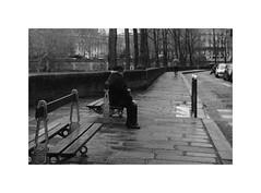 The coming year will be better... I hope. (madras91) Tags: nb noiretblanc blackandwhite bw monochrome film ilford hp5 iiif leicaiiif leicascrewmount leica summitar summitar5cmf2 street streetphotography paris solitude