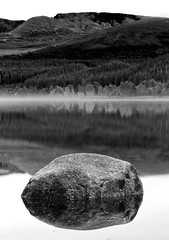 Still Reflections (captures.in.time) Tags: landscape loch lochmorlich morlich cairngorms lake trees pines autumn gold brown landscapephotography nationalpark ngm ngc reflections reflect morning scotland europe world silent still view black white
