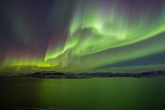 Aurora show (tranqvilizator) Tags: auroraborealis autumn polarregion kola teriberka landscape sky sea barentssea nature polarnight water