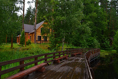 Woody embankment (МирославСтаменов) Tags: russia mordovia embankment pond house reserve cordon forest greenery