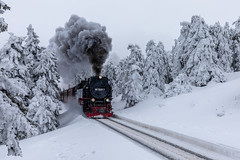 Polar Express (andreasmally) Tags: brockenbahn schmalspurbahn harz winter train zug gebirge germany deutschland snow schnee berge berg lokomotive
