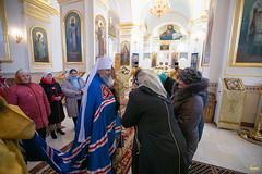 17. Свт. Феодосия Черниговского в Кармазиновке 18.02.2019