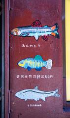 untitled-0105.jpg (JIM Mourgos) Tags: chinatown moonshots nikond750 sanfrancisco berkeley february morgiepix newpix 2019 northbeach