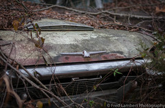 truck junkyard 12:18 3 (fred_lambert) Tags: thunderbird newjersey rust junkyard