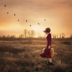 the wind at your back (Stacy Honda) Tags: portrait selfportrait conceptual fantasy sunrise dress red yellow surreal surrealism wind windy birds