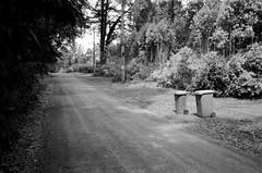 Hume Lane (Matthew Paul Argall) Tags: canonsnappy20 fixedfocus focusfree 35mmfilm blackandwhite blackandwhitefilm kentmere100 100isofilm road street humelane