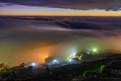 淹沒_DSC7850N (何鳳娟) Tags: 頂石棹 夕陽 雲海 雲瀑 夜景 風景 琉璃光 茶園 阿里山