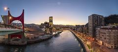 Bilbao y su ría (Juan Ig. Llana) Tags: bilbao bizkaia vizcaya españa es ciudad río ría puente agua museo guggenheim torreiberdrola horaazul cielo edificio arquitectura panorámica irix15mm