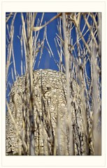 Moulin de Merveille (Charlottess) Tags: nikon5300 2019 février berre ruine moulin paca bouchesdurhône