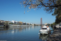 Guadalquivir (peterphotographic) Tags: p3120192edwm olympus em5mk2 microfourthirds ©peterhall guadalquivir seville sevilla spain espina andalusia europe river bridge water boat city cityscape urban