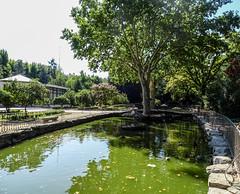 estanque Campo del Moro Madrid 01 (Rafael Gomez - http://micamara.es) Tags: campodelmoro esp españa madrid estanque campo del moro