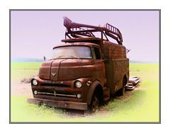 1957 Dodge  COE série 3 (C&C52) Tags: paysage landscape campagne champs camion dodge épave artnumérique collector