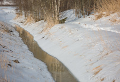 River reflections, Tønsberg, Norway (KronaPhoto) Tags: tønsberg vinter natur vår