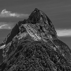 I could not let show that fear of letting go (.KiLTRo.) Tags: kiltro nz newzealand milfordsound mitrepeak landscape mountain sky forest trees nature high bw blackandwhite hill