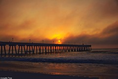 To escape (gusdiaz) Tags: wrightsvllle nc pier sunrise amanecer ocean oceano beautiful hermoso canon canonphotography nature naturephotography mar arena vacacion trip fish fisherman sun clouds sol nubes pescado pescadores