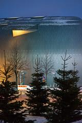 Citizen Square (pni) Tags: tree spruce plant kiasma stevenholl museetförnutidskonst museumofcontemporaryart nykytaiteenmuseo snow fence sky light helsinki helsingfors finland suomi pekkanikrus skrubu pni