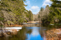 The Last Day of Winter (Chancy Rendezvous) Tags: howepond spencer spencerstateforest howestatepark massachusetts winter spring equinox pond water reflection trees forest woods ice landscape springequinox davelawler chancyrendezvous blurgasm lawler