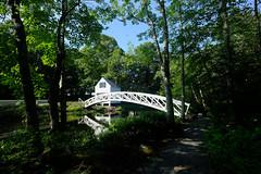 Bridge in Maine (` Toshio ') Tags: toshio maine somesville mountdesertisland bridge garden architecture forest river reflection fujixt2 xt2