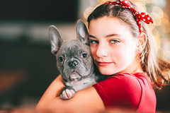 (Rebecca812) Tags: girl dog pets puppy pamperedpets frenchie frenchbulldog cute love companionship friendship togetherness red portrait people canon rebeccanelson rebecca812 gray blue headband polkadot sweet bff dogs canine indoors christmaslights happiness