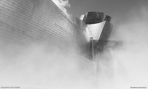 atrapado en la niebla